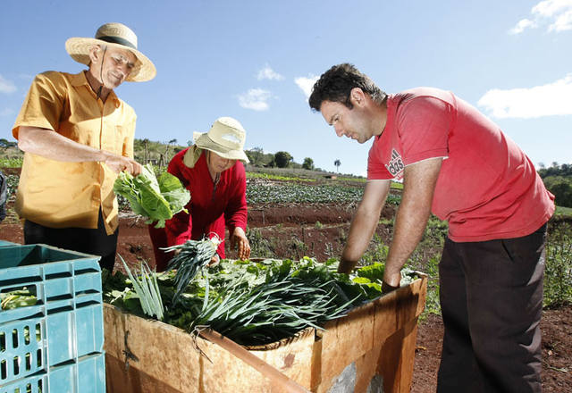 Recursos do Seguro Rural devem triplicar em 2015 no Paraná. Foto: Arquivo ANPr