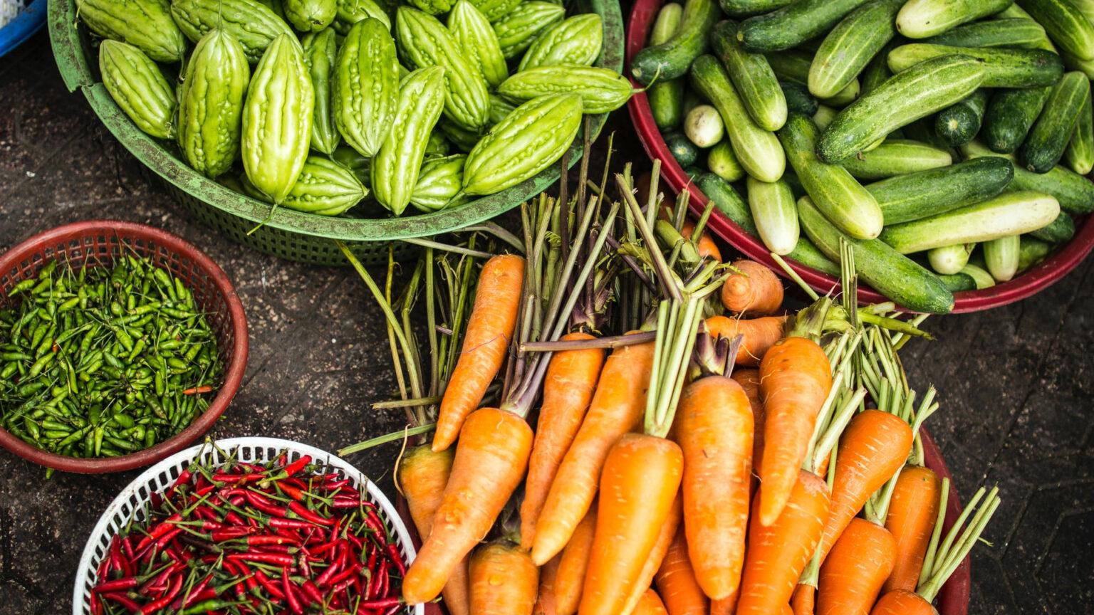 cesta de orgânicos organizar a cadeia