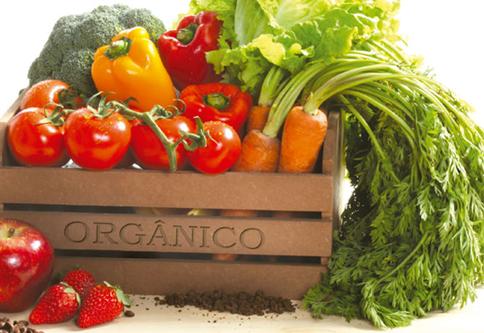 Cesta com produtos orgânicos em uma feira