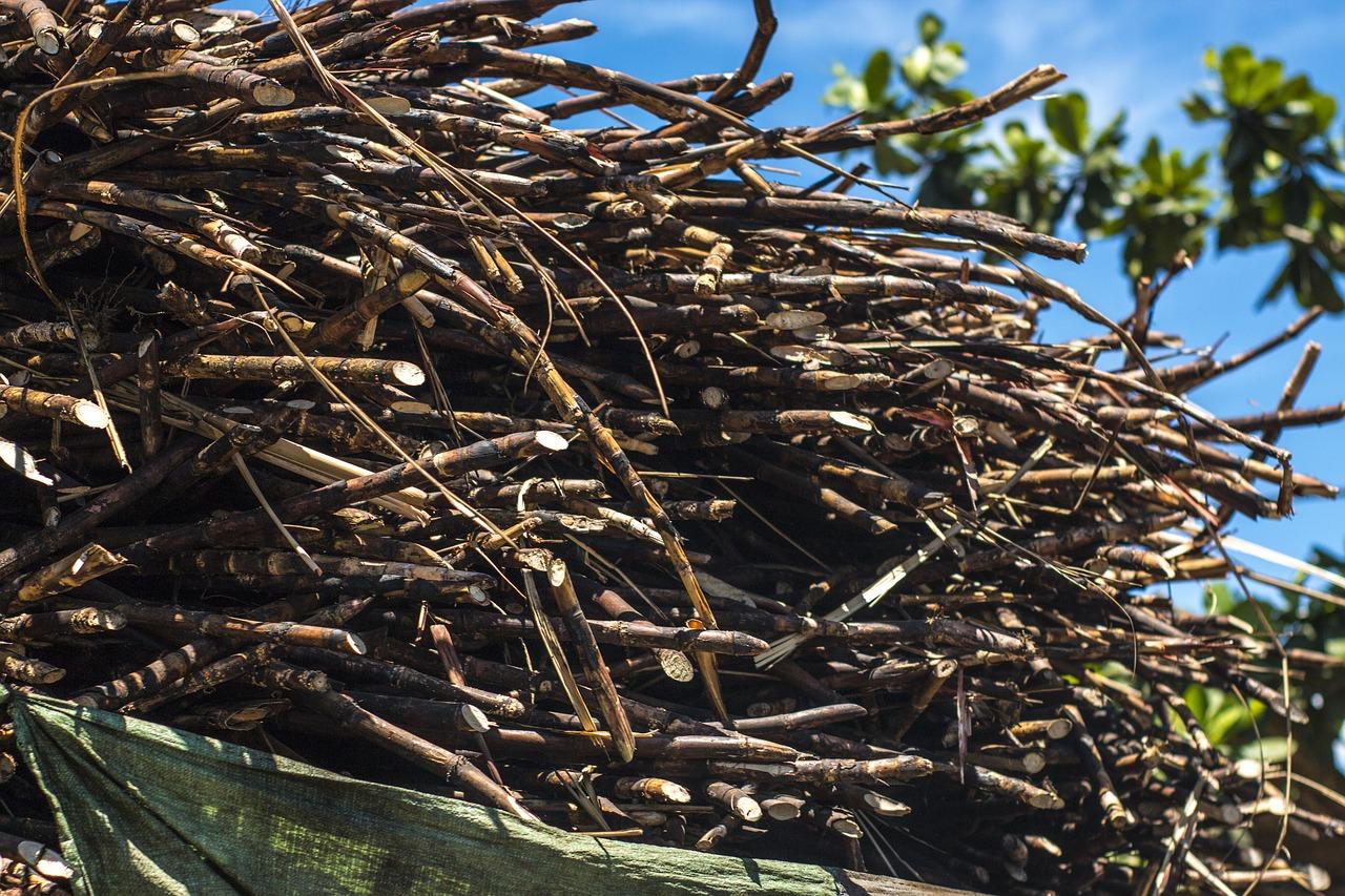 Imagem de grande recipiente com montante de cana-de-açúcar marrom com céu azul ao fundo