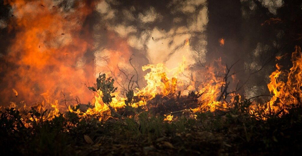 Incêndios no campo