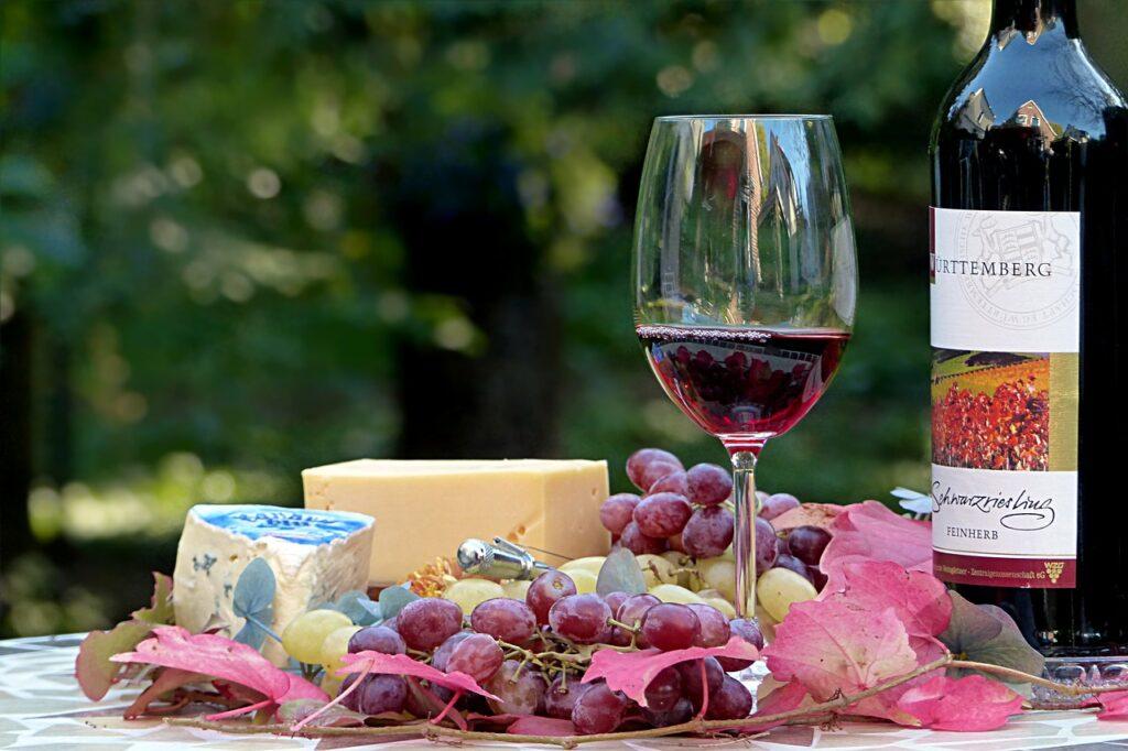 Turismo rural, vinho e café em Serra Negra