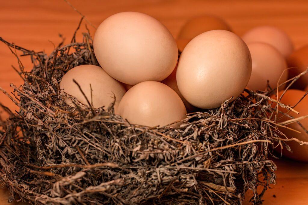 Brasil firma acordo para exportação de ovos e arroz ao México