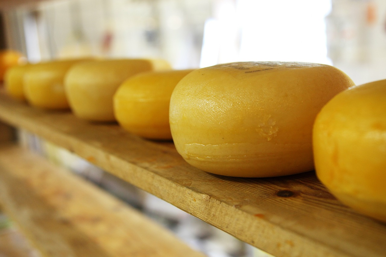 queijo-artesanal-santa-paula