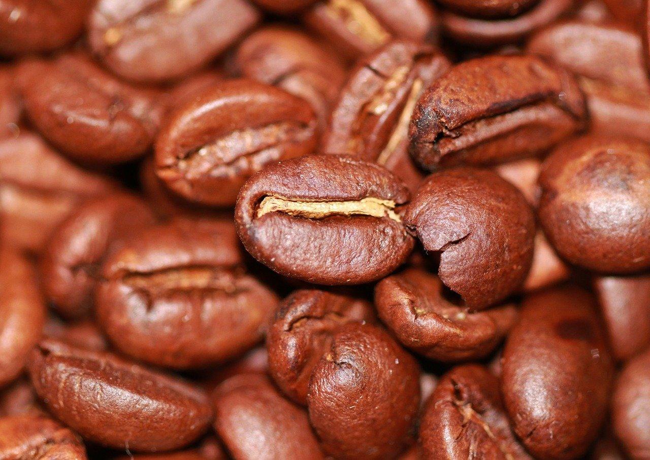 safra-de-cafe-rn