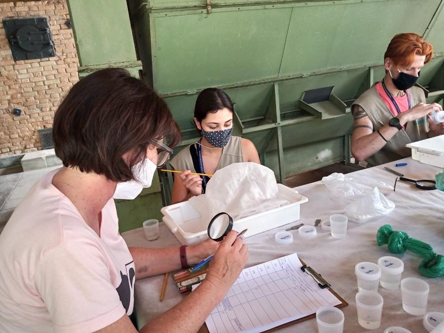 Biocarrapaticida desenvolvido pelo Instituto Biológico é utilizado no controle de carrapato-estrela em São José dos Campos