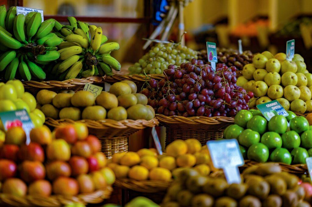 AgroSP: plataforma é lançada para conectar produtor rural a compradores