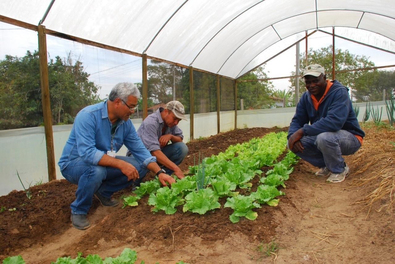 Extensionista Rural: agente de transformação social, econômica e ambiental