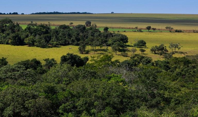 Proprietários rurais que quiserem acessar o Programa de Regularização Ambiental devem fazer o CAR até dia 31/12