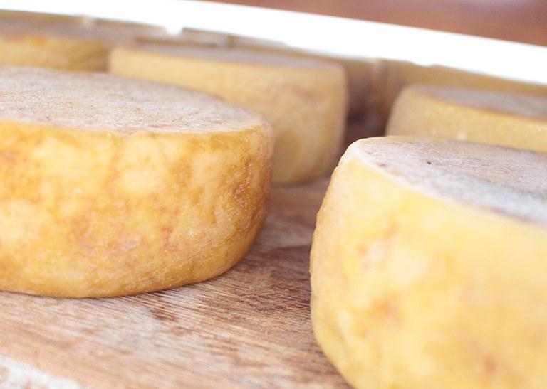 Consulta pública sobre regras para fabricação de queijo artesanal vai até 24 de janeiro