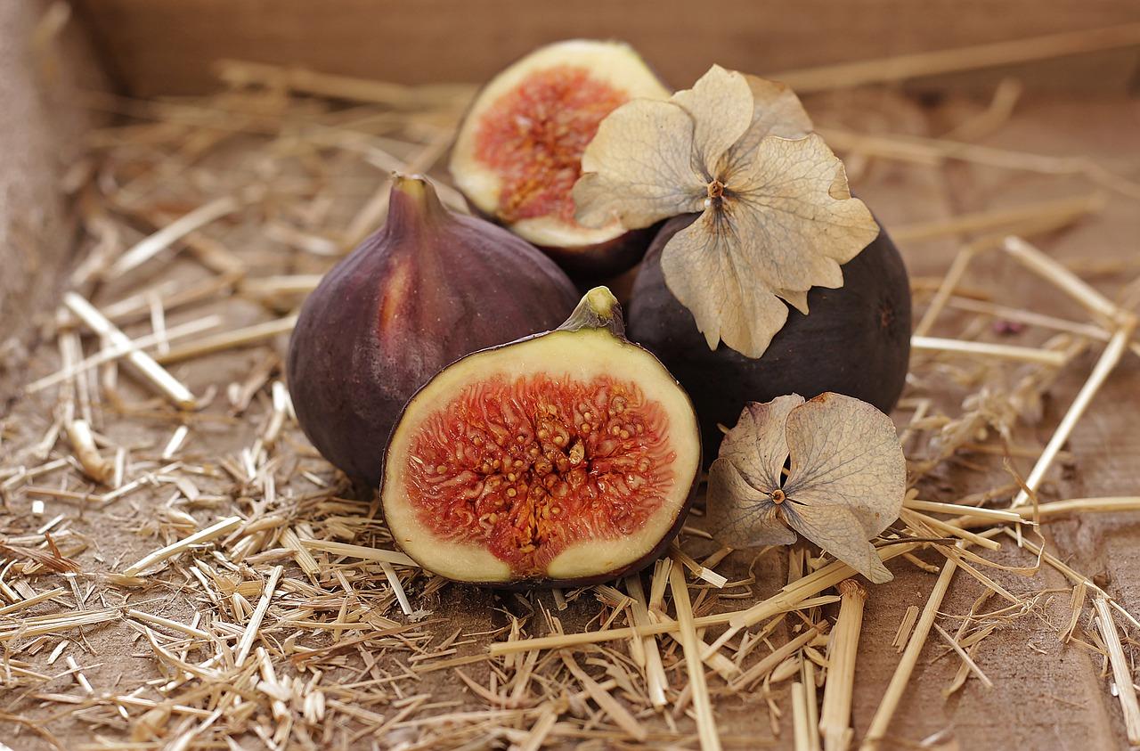 Produtor de figo de Valinhos garante fruta fresca, colhida no dia para sua clientela