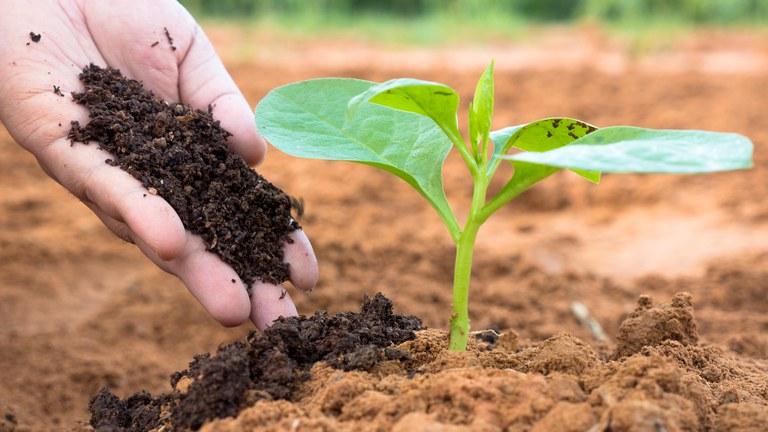 Grupo Interministerial irá elaborar Plano Nacional de Fertilizantes