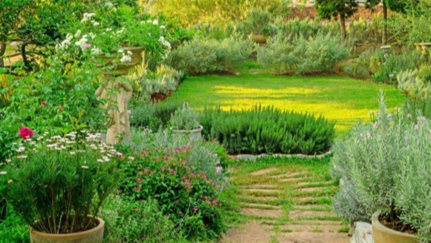 Jardim sensorial oferece contato com a natureza e estímulo de sentidos; saiba como montar o seu