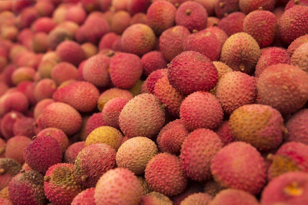 Lichia: fonte de Vitamina C, fruta pode ser apreciada até o final de janeiro