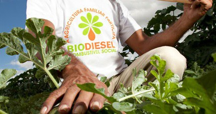 Veja como solicitar o Selo de Biocombustível Social pela internet