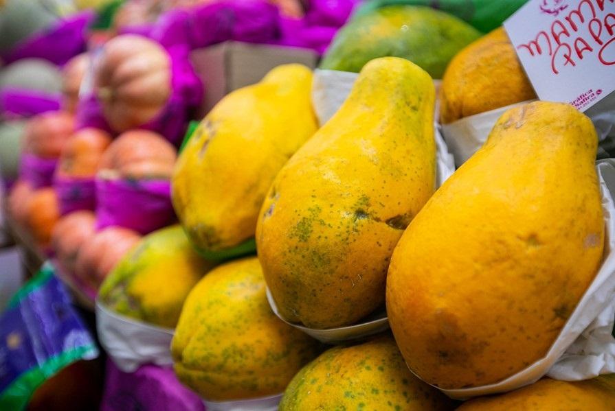 Perdas de produtos hortifrutigranjeiros: onde ocorrem e quais os principais motivos?