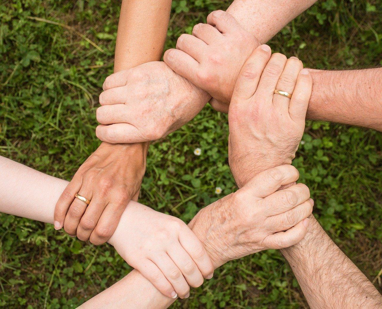 Cooperativismo no campo: conheça 4 vantagens para o produtor rural