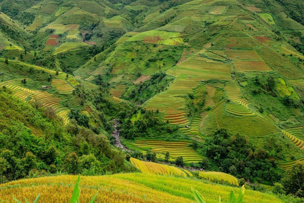FAESP alerta produtores rurais sobre regularização ambiental