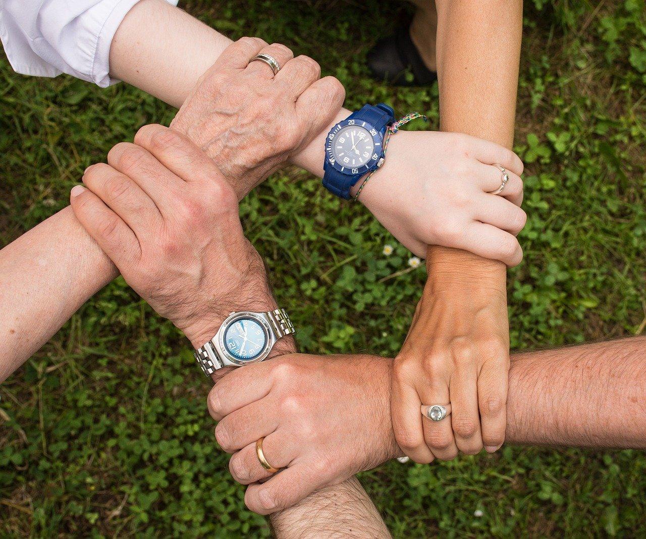 3 passos que você precisa seguir para começar uma cooperativa no meio rural