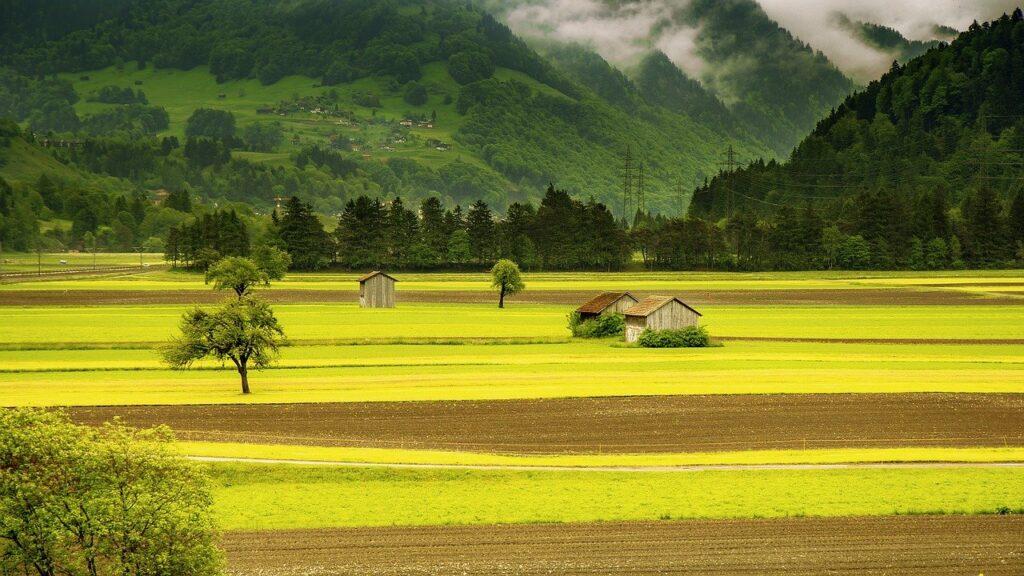 Tudo que você precisa saber para fazer o Cadastro Ambiental Rural