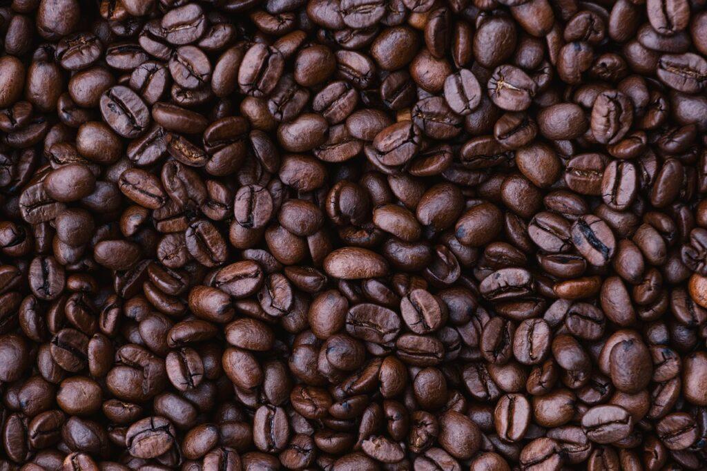 Via seca ou úmida na produção do café? O SENAR-SP responde