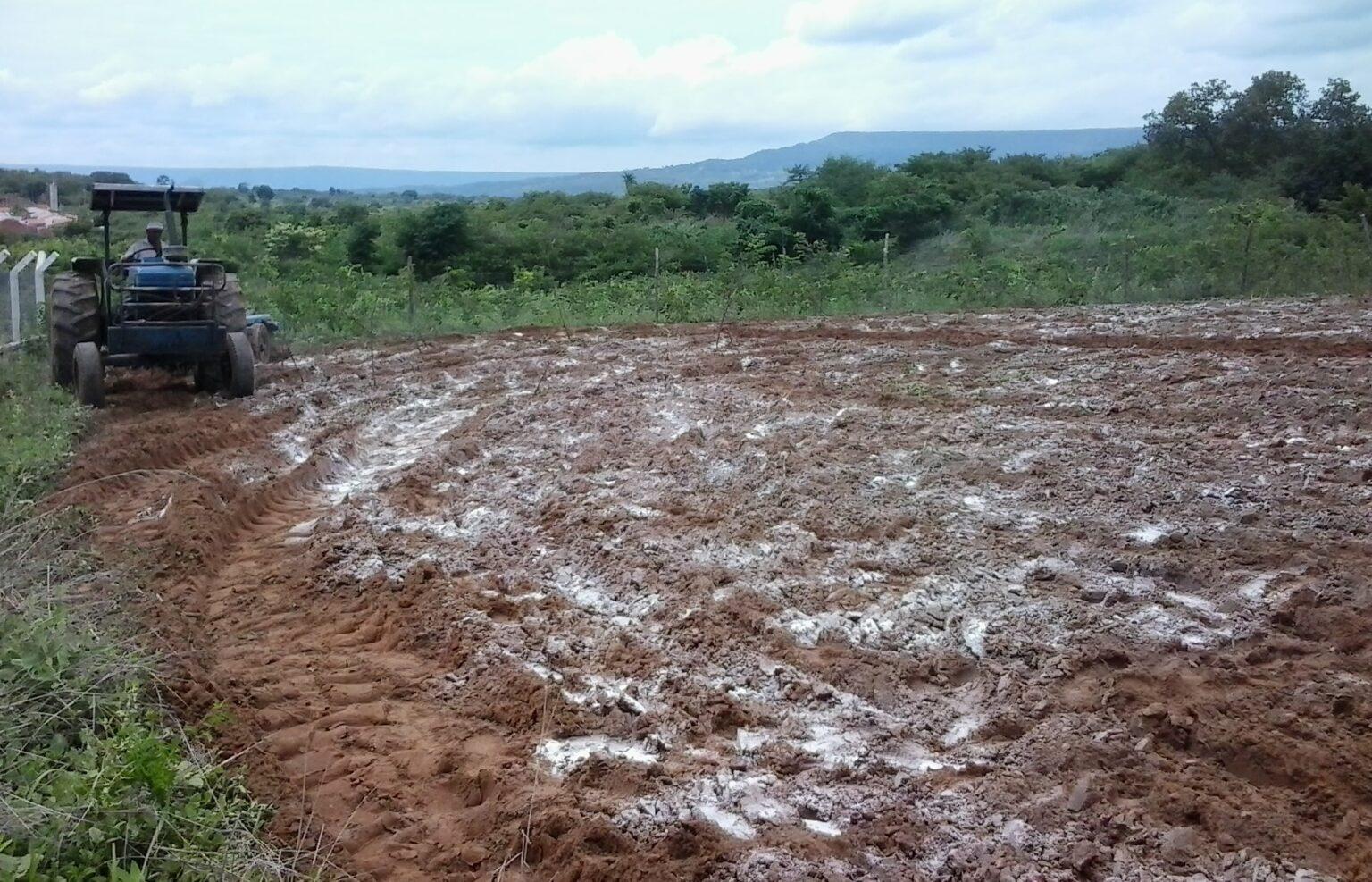 A importância da calagem na conservação do solo e melhoria de resultados