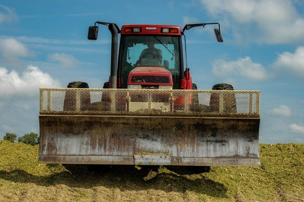 Confira 7 dicas para produzir silagem de milho com qualidade