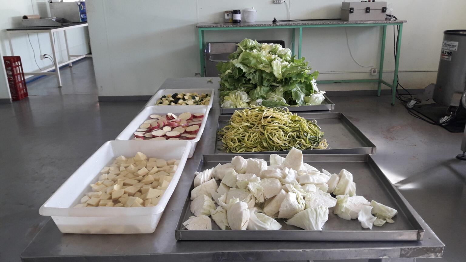 Processamento de alimentos pode aumentar consumo e agregar valor ao produto