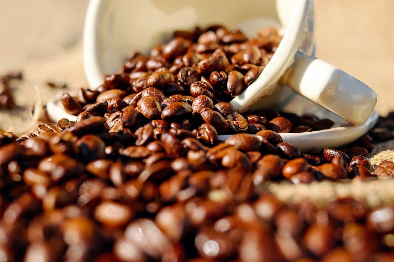 Saiba como conseguir qualidade em cafés naturais