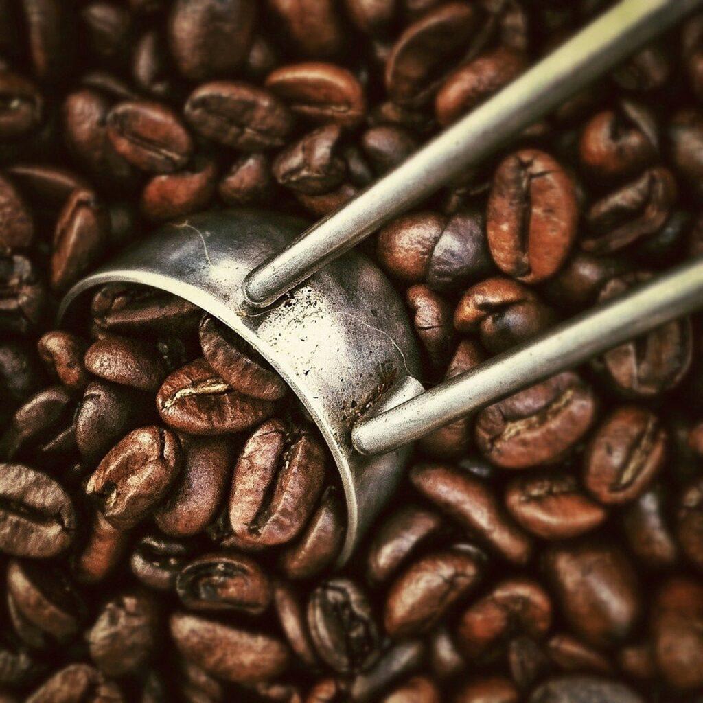 Concurso de cafés especiais em Pardinho (SP) aumenta participação de produtores na região