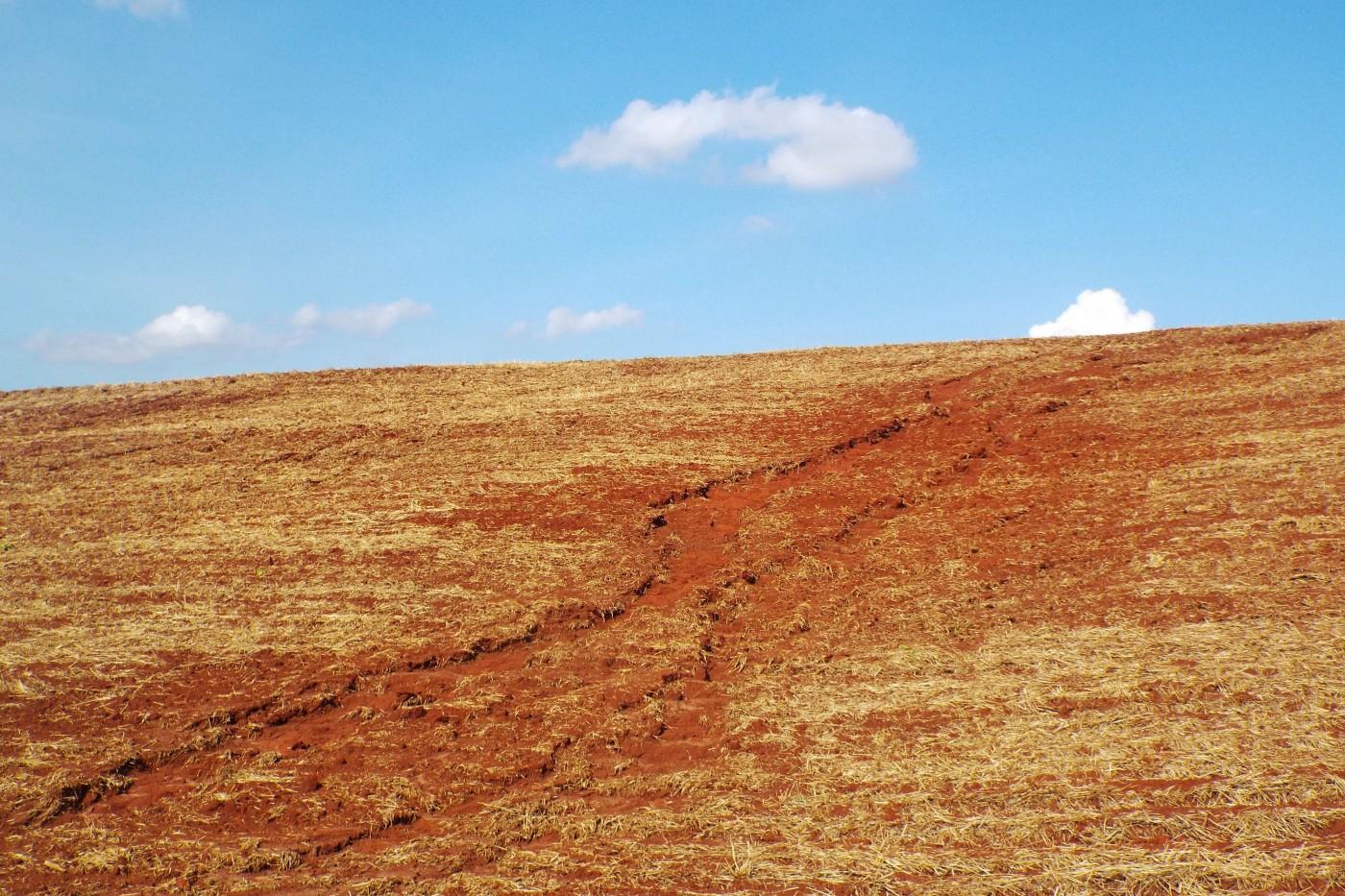 Período da seca é ideal para produtor corrigir ou evitar erosões do solo