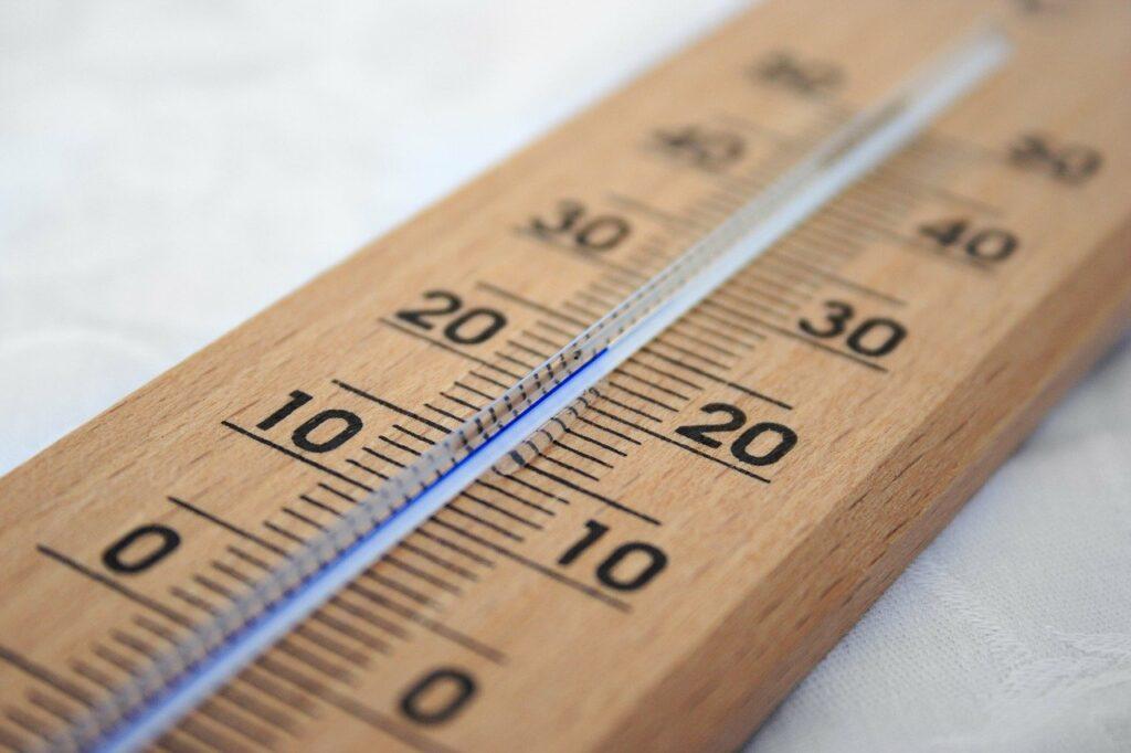 Baixas temperaturas fazem café e tomate terem colheita mais lenta em SP