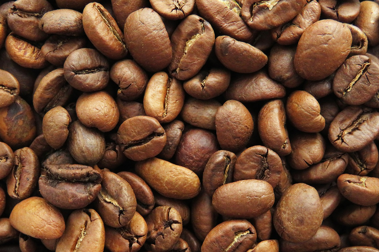 Cafeicultores de SP apostam na diversificação com foco na preservação ambiental
