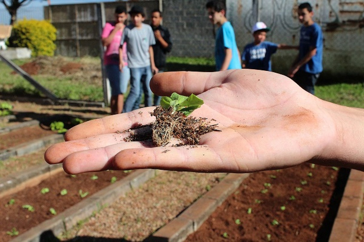 3 lições que o SENAR-SP dá a jovens empreendedores rurais