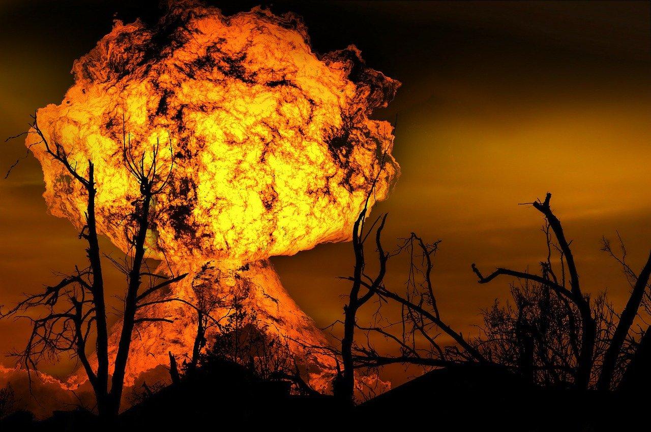 Queimadas: conheça 4 tipos de incêndios e seus efeitos