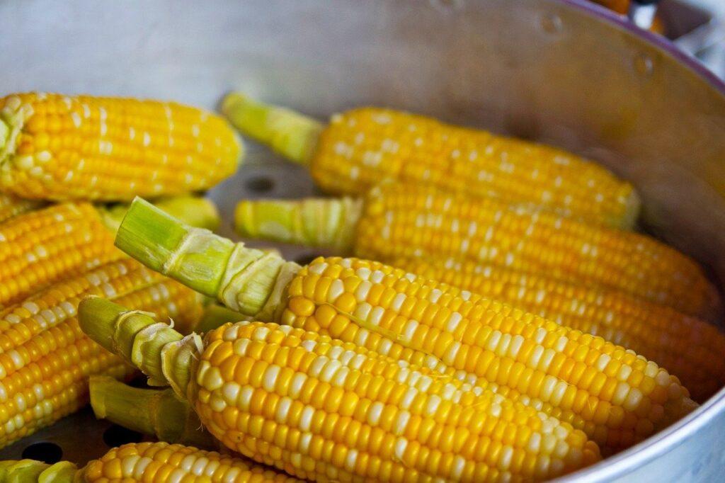 Conheça 7 benefícios do milho para a saúde