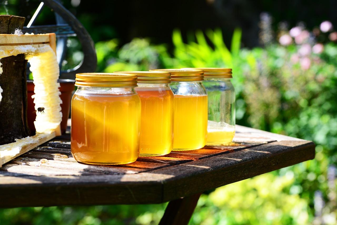 5 dicas para agregar valor na produção de mel